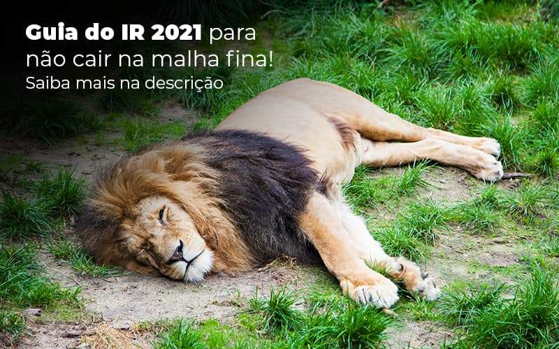 Guia Ir 2021 Para Nao Cair Na Malha Fina Saiba Mais Na Descricao Post 1 - Contabilidade em Guarulhos - SP | Guarulhos Contabilidade - IR 2021 – o que é preciso saber sobre?
